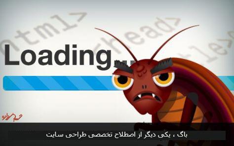 باگ یکی دیگر از اصطلاحات تخصصی طراحی سایت